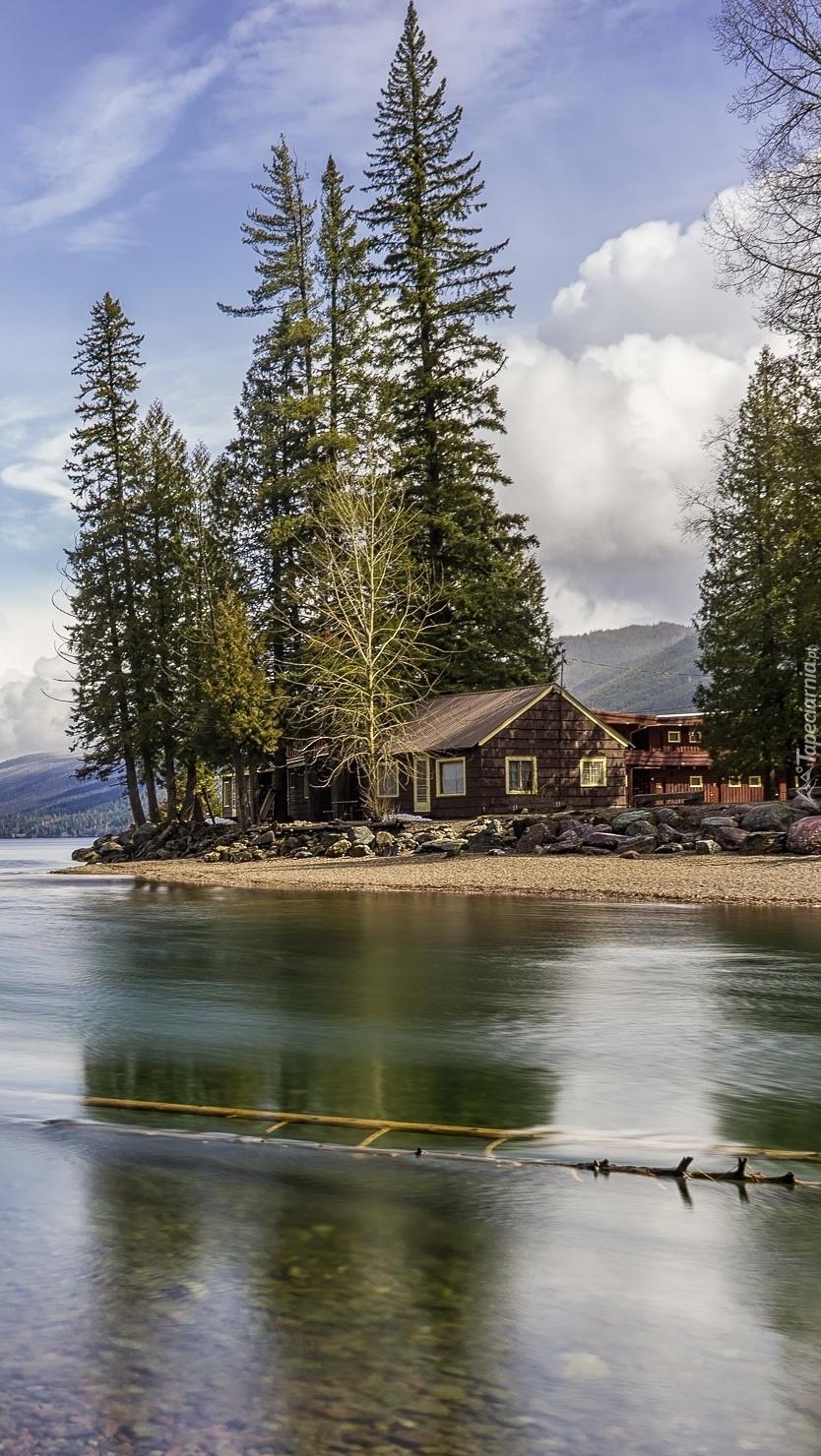 Dom i wysokie drzewa nad rzeką