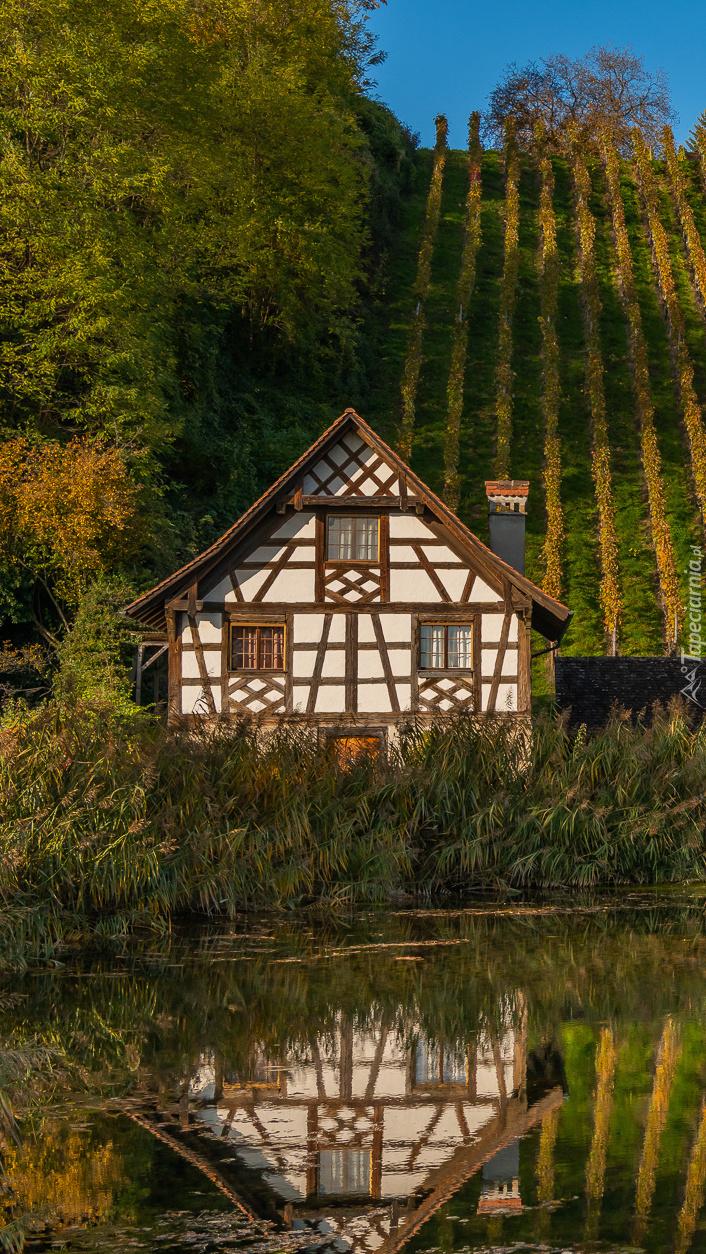 Dom nad stawem obok winnic na wzgórzu