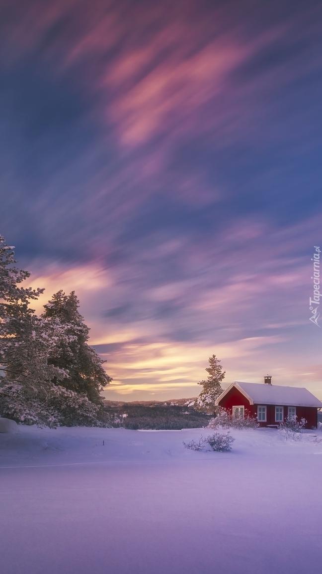 Dom nad zamarzniętym jeziorem Ringerike w Norwegii