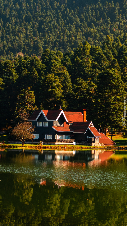 Dom pod lasem nad jeziorem Golcuk