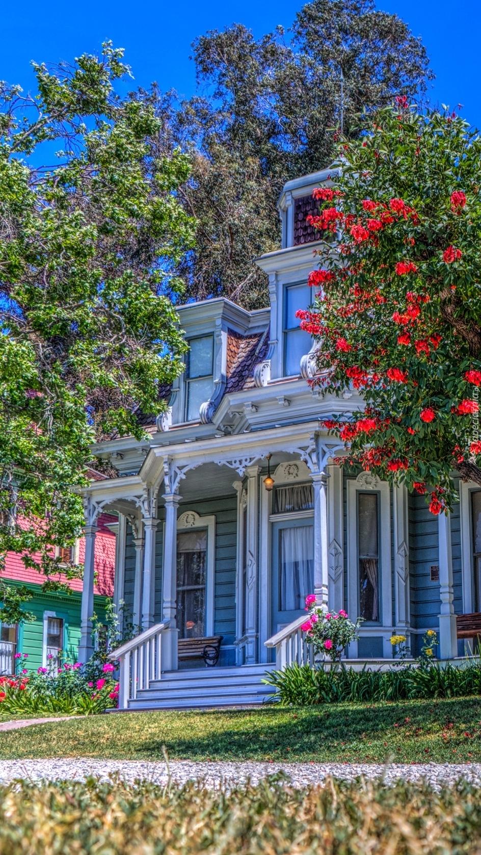 Dom w kwiatach