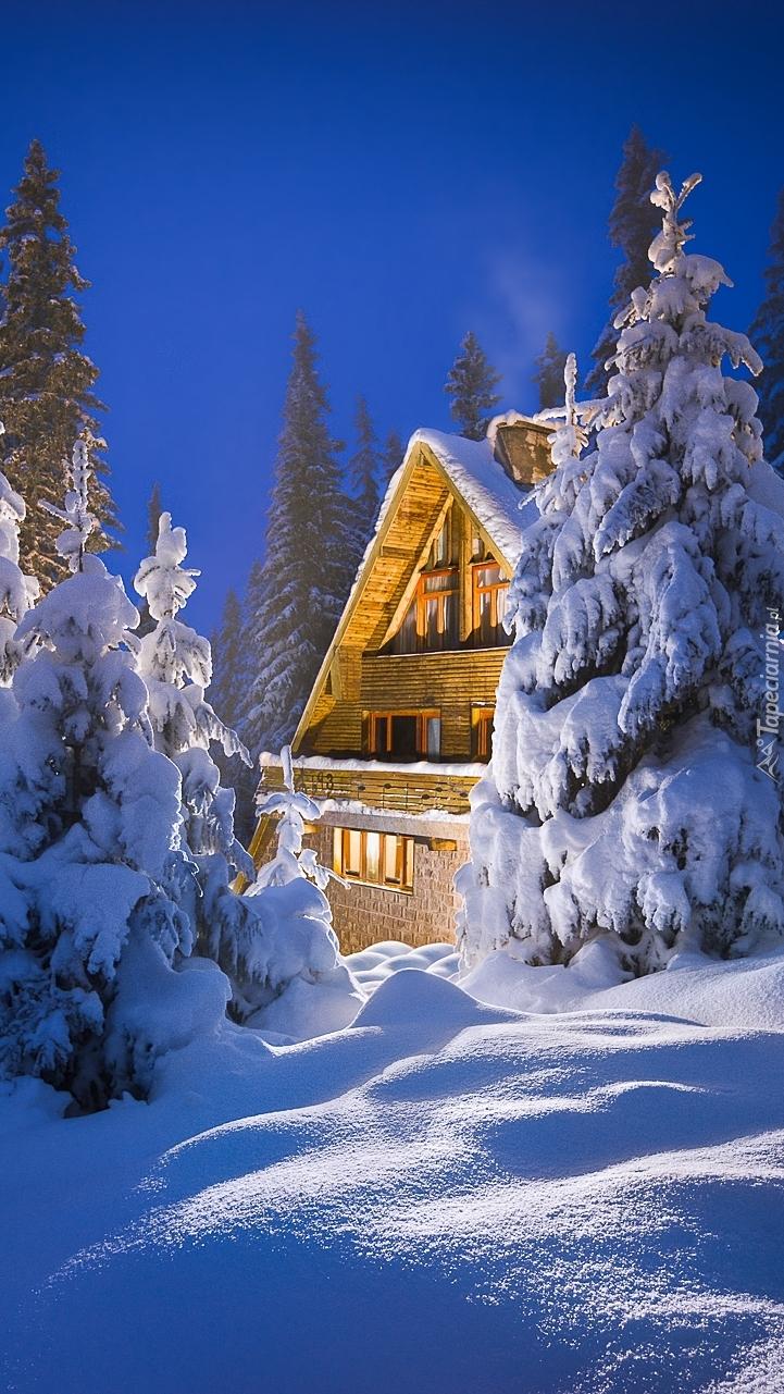 Dom w zimowym lesie