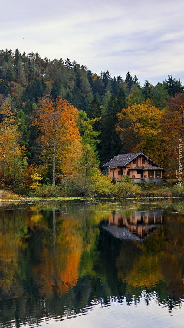 Dom wśród jesiennych drzew nad jeziorem