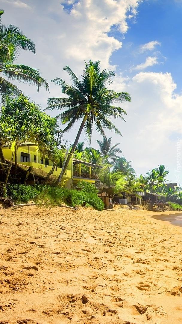 Dom wśród palm na plaży