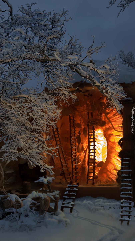 Domek oświetlony w lesie