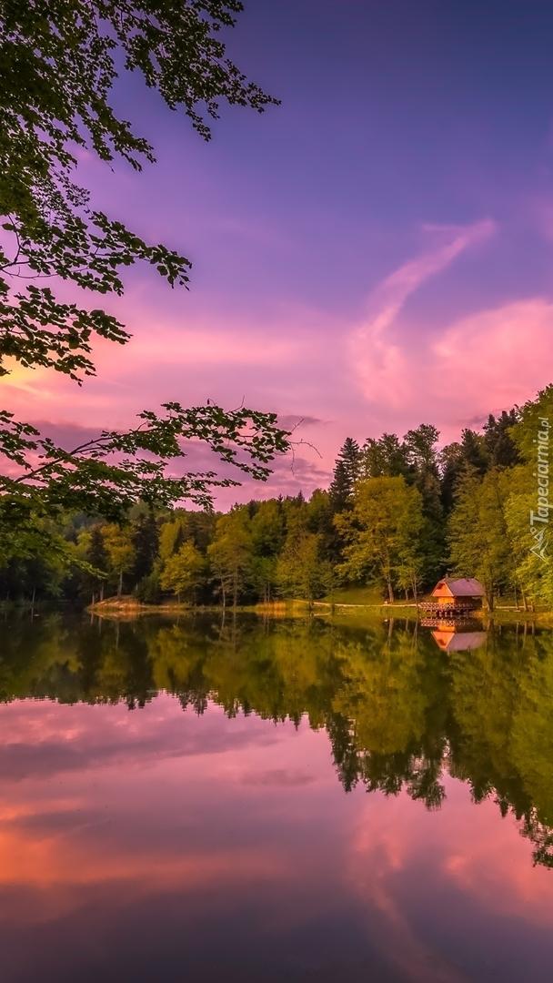 Domek pod lasem nad jeziorem