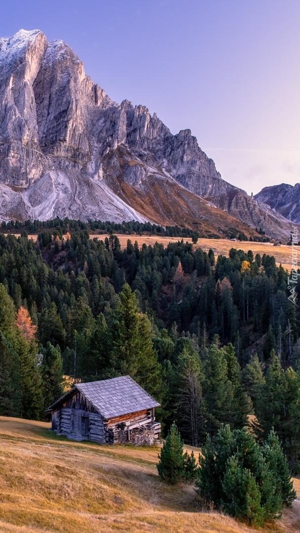 Domek pod lasem w górach
