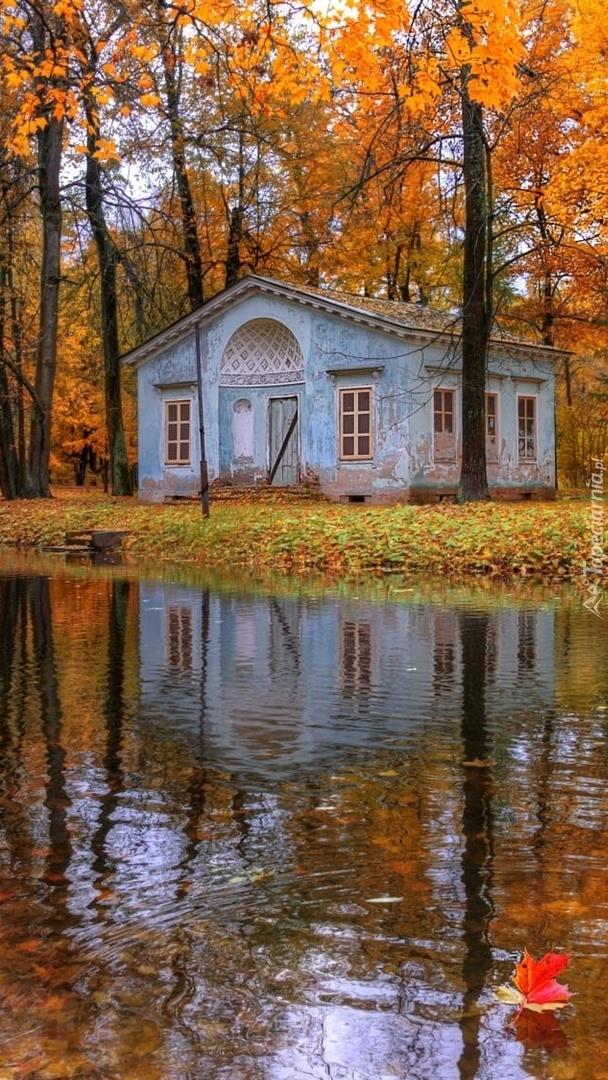 Domek w parku nad stawem jesienią