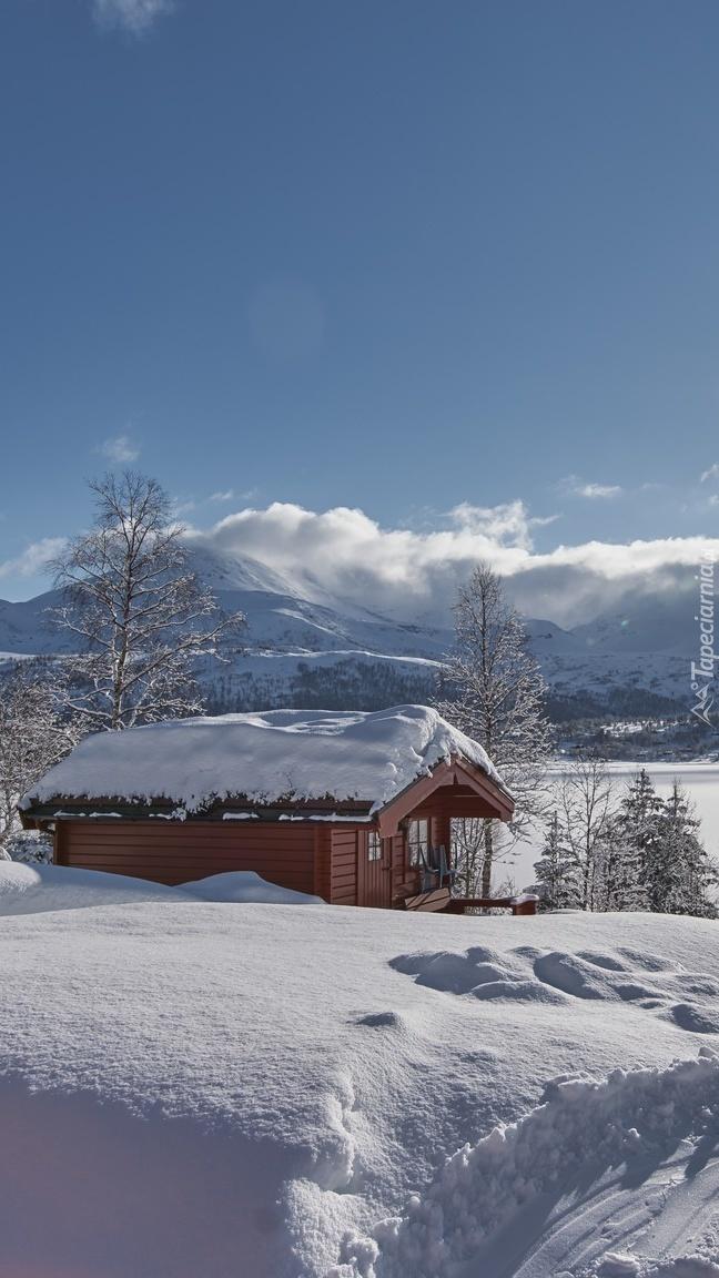Domek w zimowej scenerii