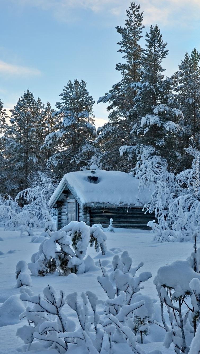 Domek w zimowym lesie