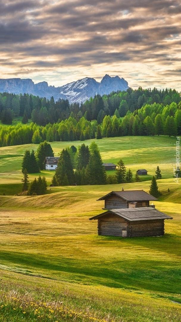 Domki na płaskowyżu Seiser Alm