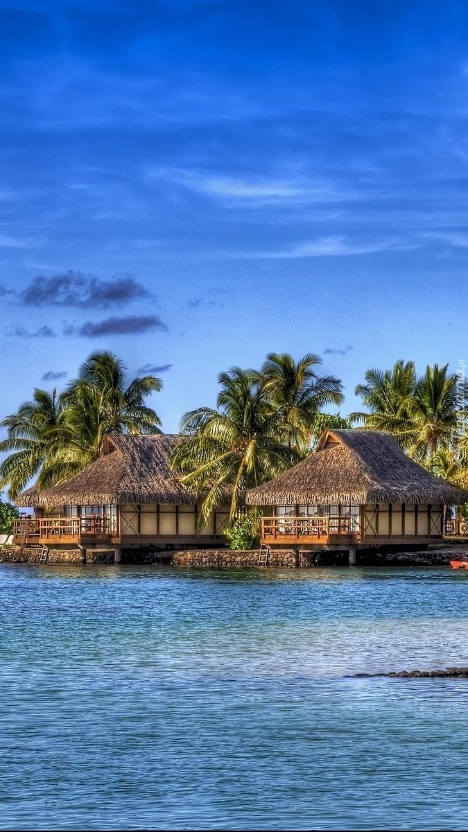 Domki nad morzem pod palmami