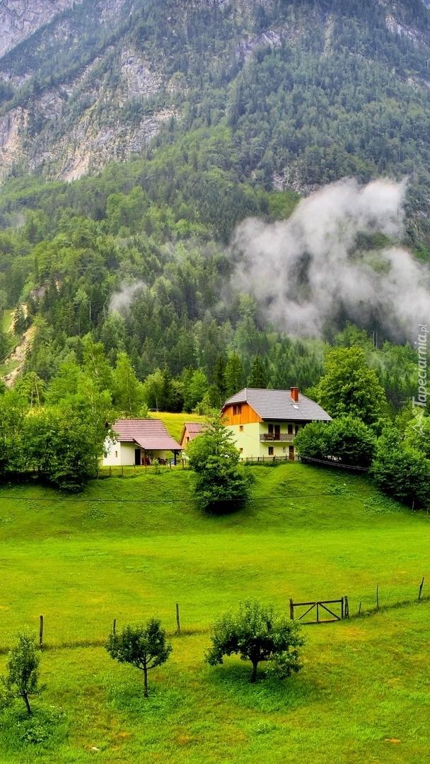 Domki w Alpach Julijskich