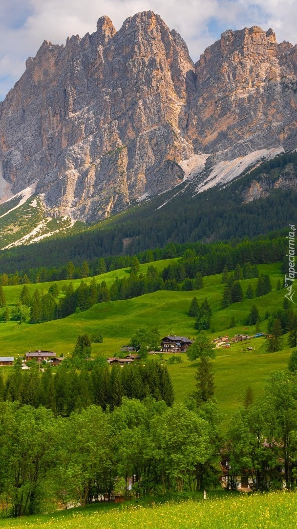 Domy i drzewa na tle gór