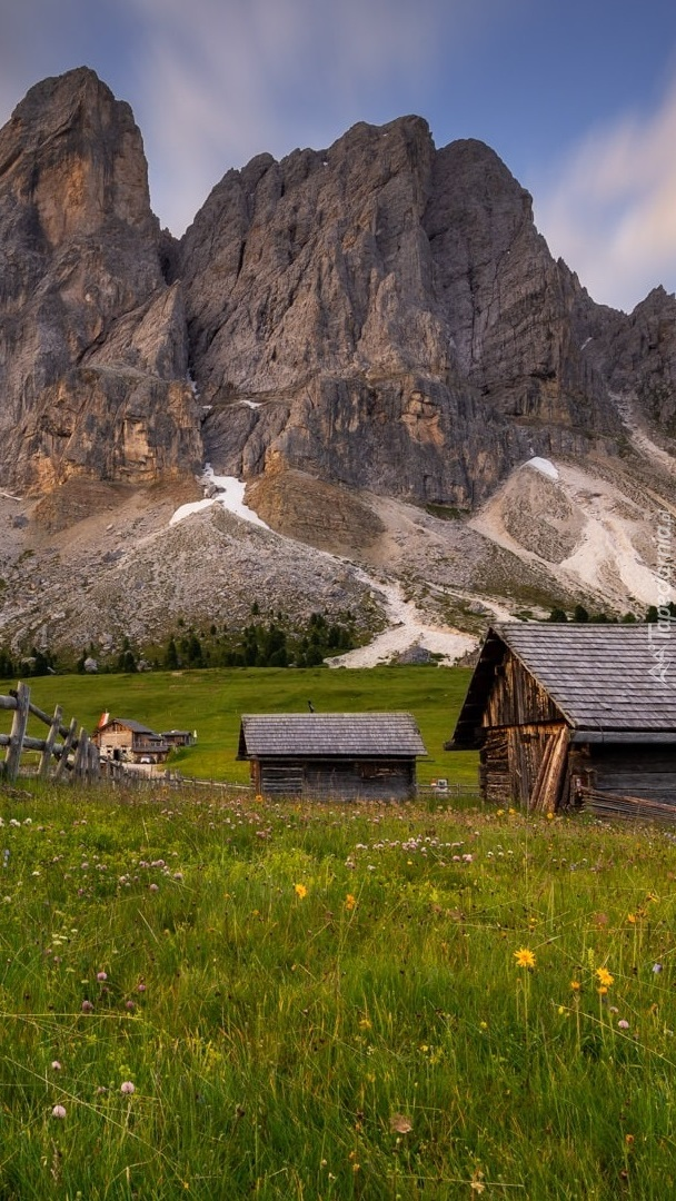 Domy na łące na tle gór