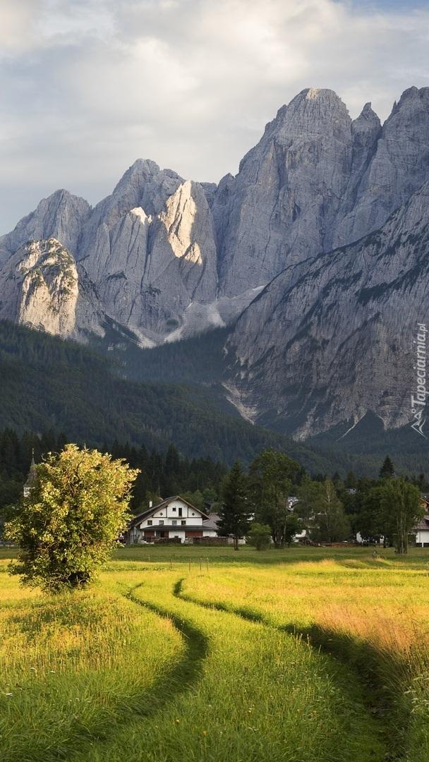 Domy na łące w górach
