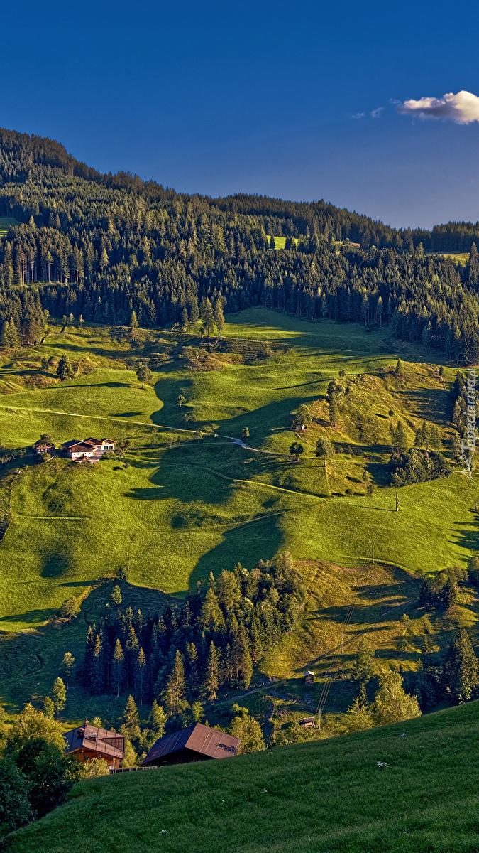 Domy w alpejskiej dolinie
