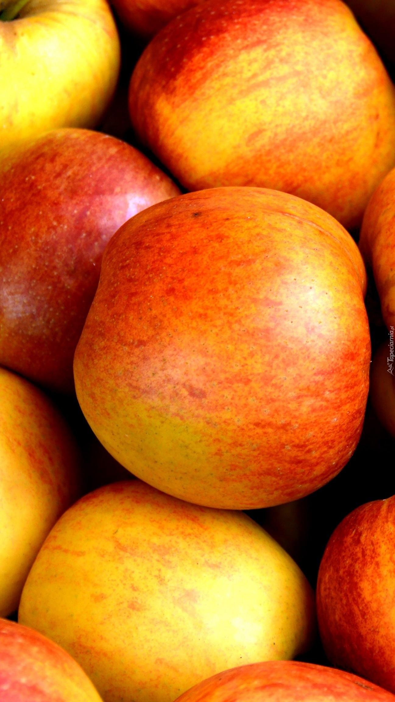 Dorodne jabłka