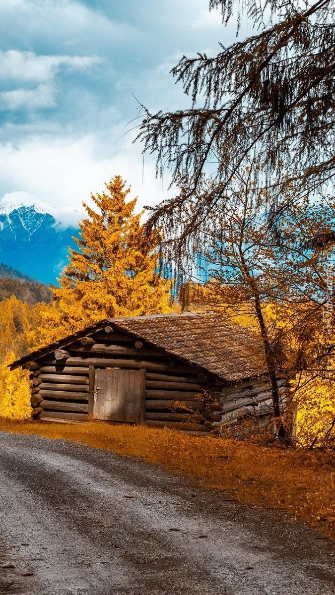 Drewniana chata przy drodze