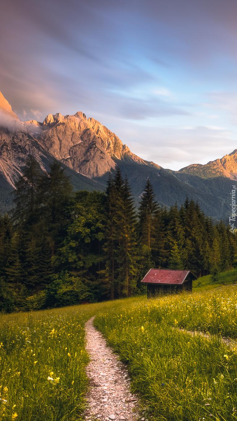 Drewniana chatka na górskiej łące