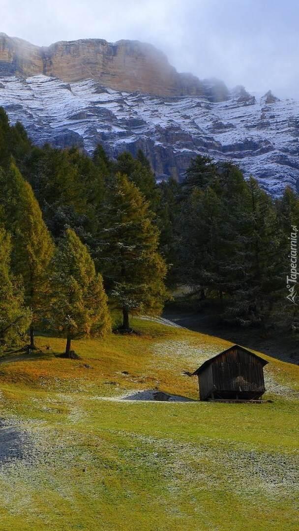 Drewniana szopa w dolinie