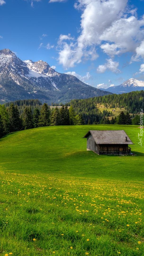 Drewniany dom na górskiej łące