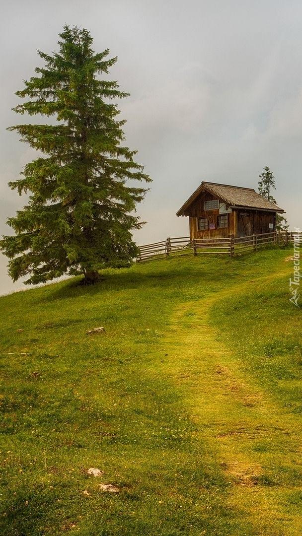 Drewniany domek na wzgórzu