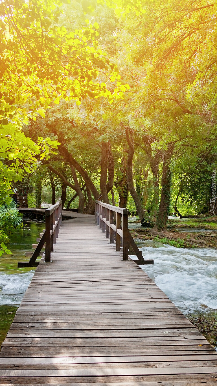 Drewniany most nad rzeką w parku