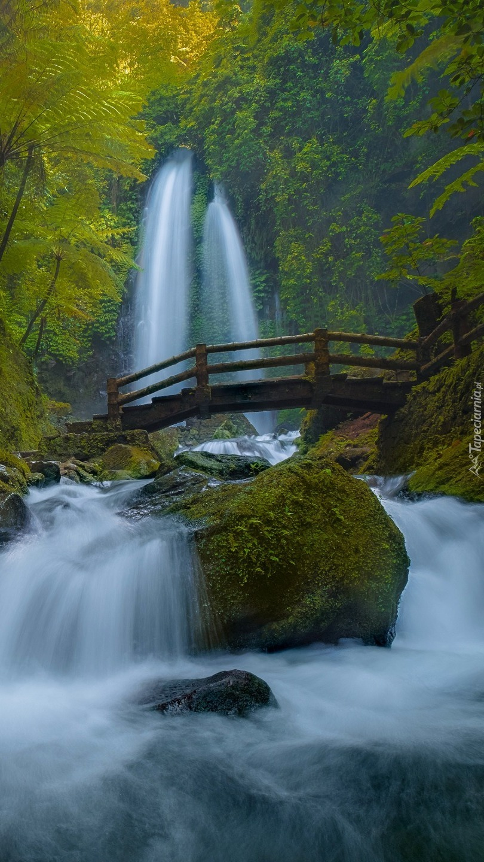 Drewniany mostek na tle leśnego wodospadu