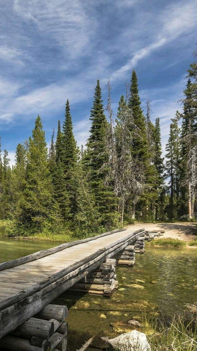 Drewniany mostek nad jeziorem