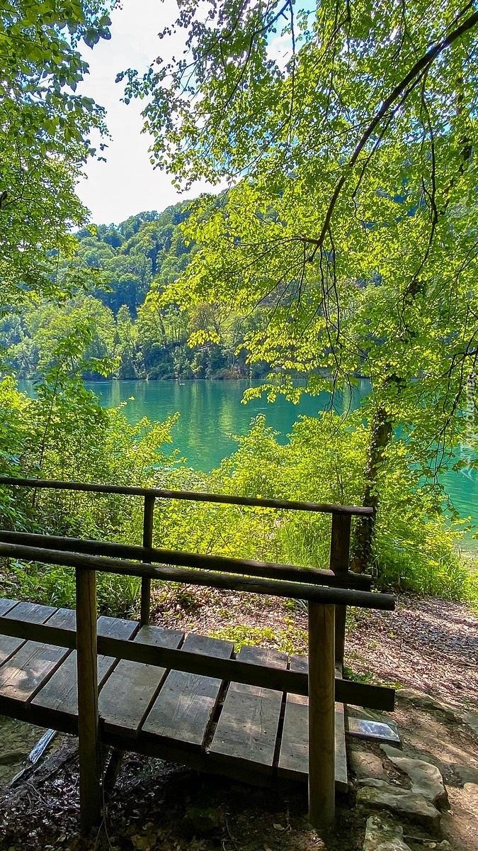 Drewniany mostek obok jeziora