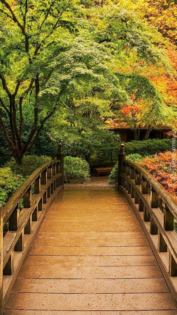 Drewniany mostek w parku