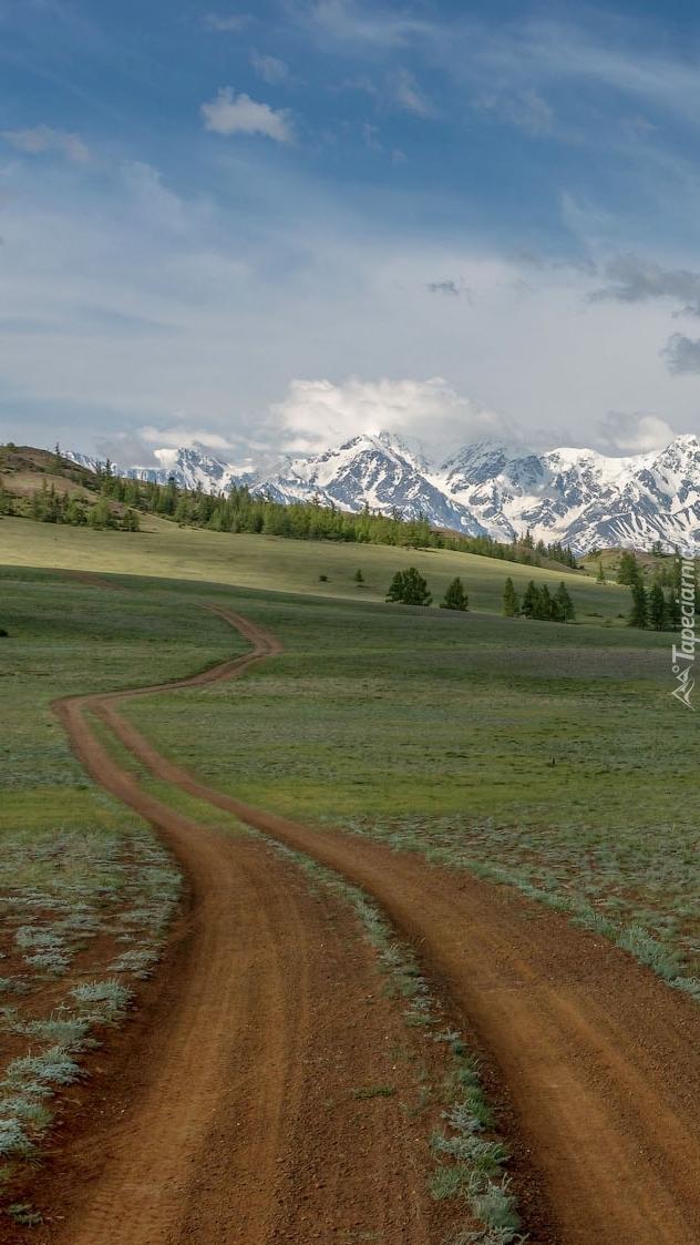 Droga przez pola w kierunku gór Północnoczujskich