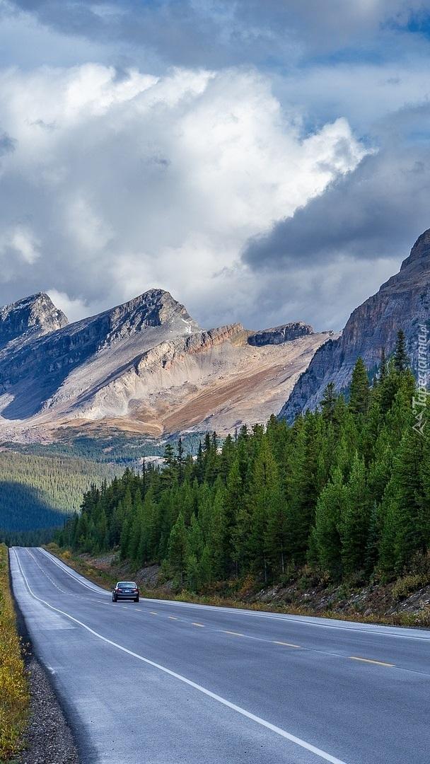 Droga w Górach Skalistych