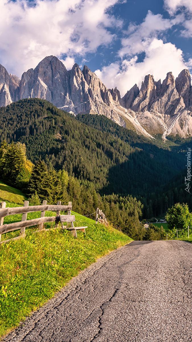 Droga z widokiem na Alpy
