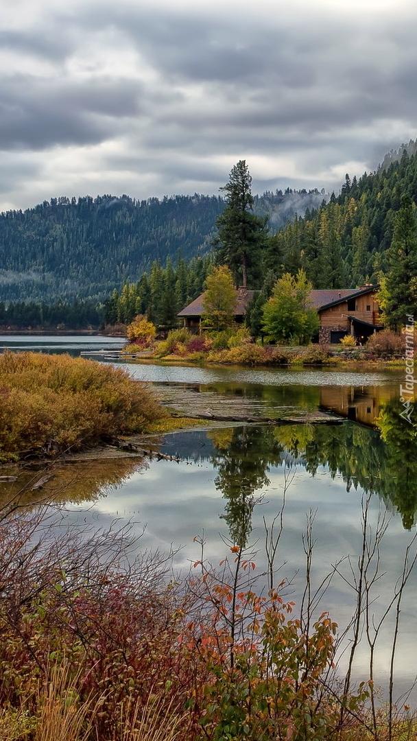 Drzewa i domy nad jeziorem Salmon Lake