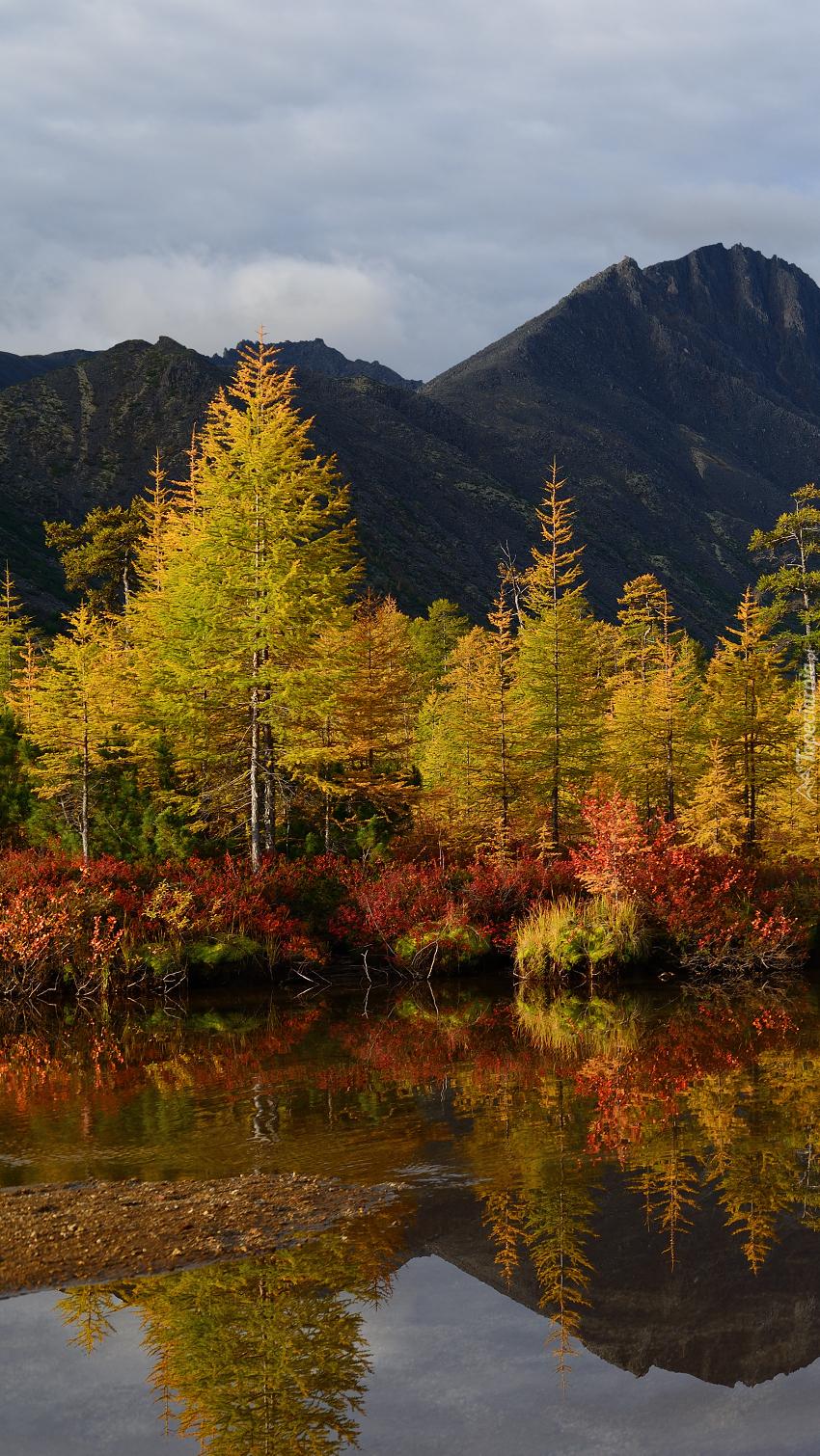 Drzewa i góry nad jeziorem Nevidimka