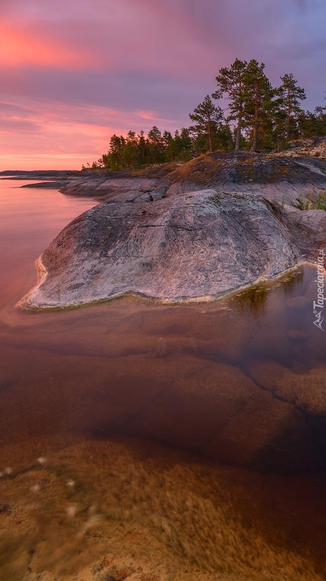 Drzewa na skałach nad jeziorem