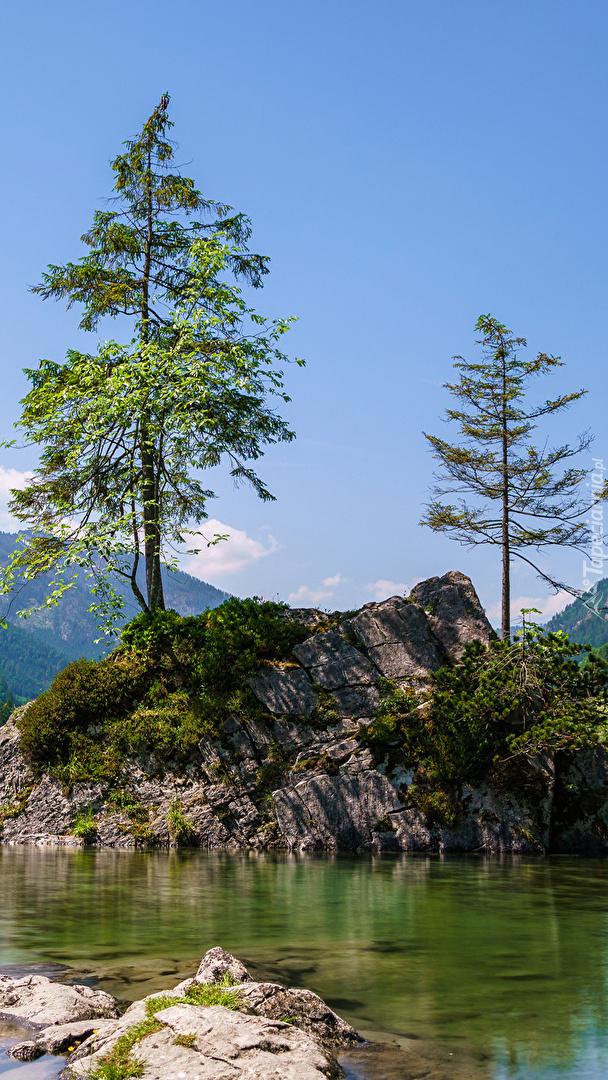 Drzewa na skałach nad jeziorem  Hintersee