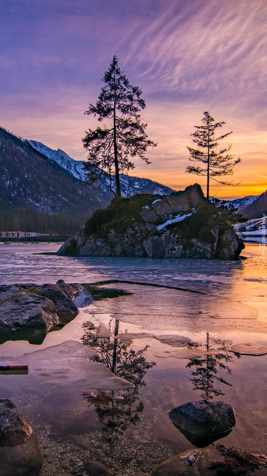 Drzewa na skałach w jeziorze Hintersee