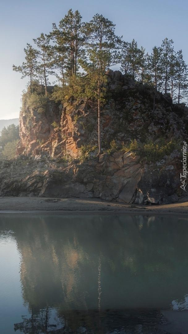 Drzewa na skale nad rzeką