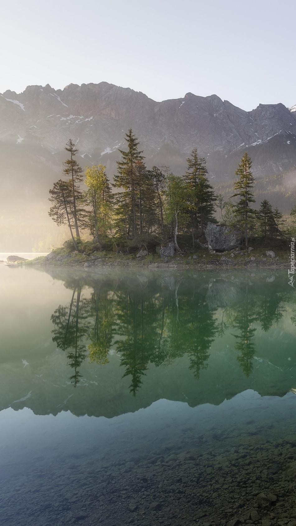 Drzewa nad jeziorem Eibsee