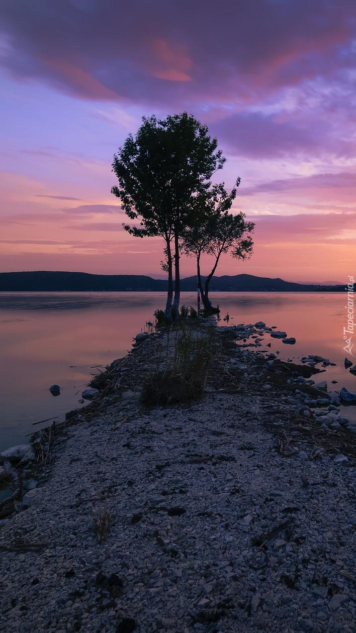 Drzewa nad jeziorem Kastoria