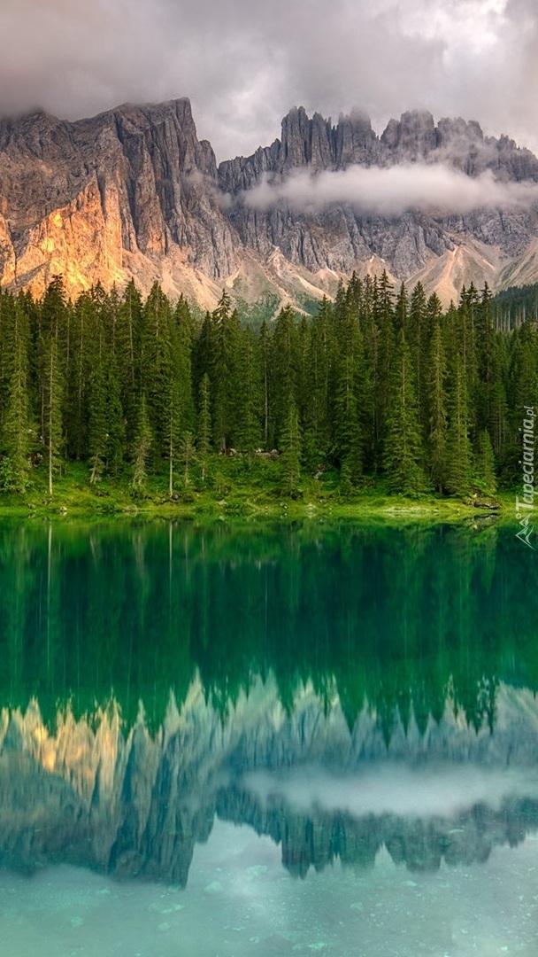 Drzewa nad jeziorem Lago di Carezza