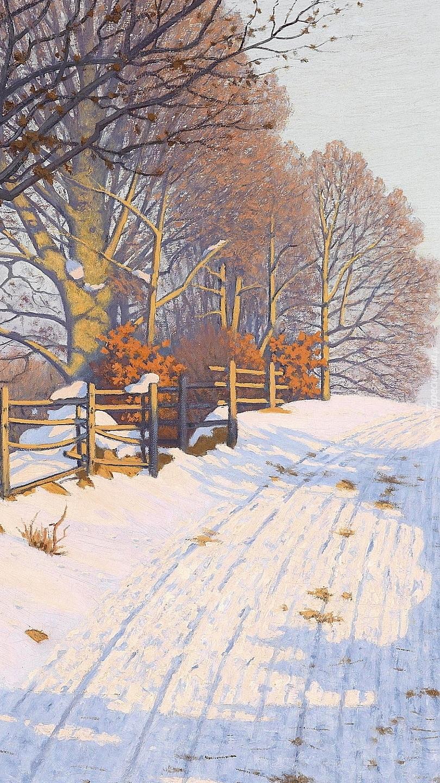 Drzewa przy zimowej drodze