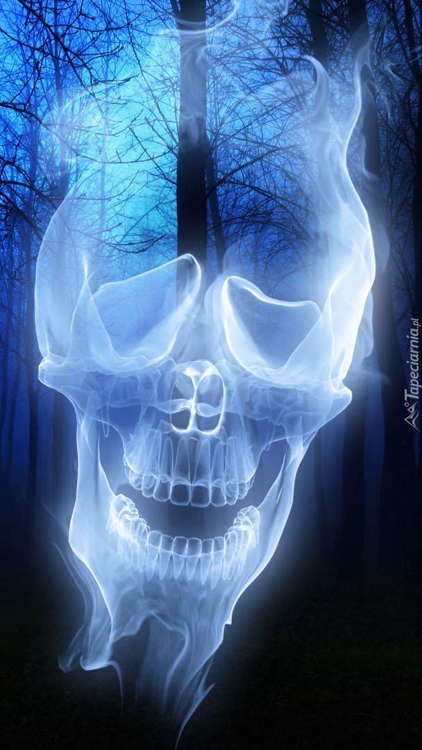 Duch w mrocznym lesie