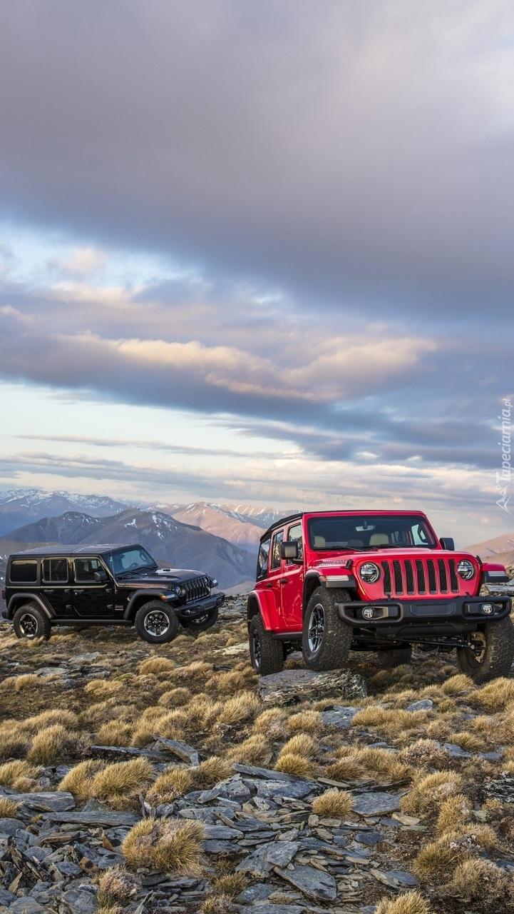 Dwa Jeepy Wrangler JL Rubicon