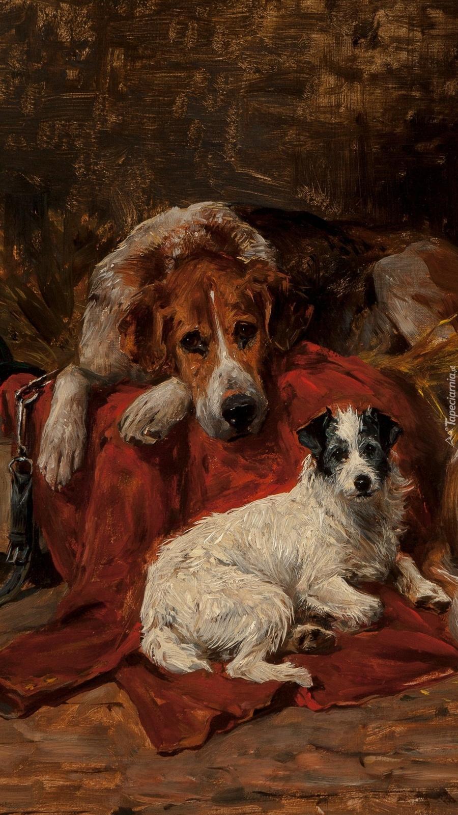 Dwa leżące psy na obrazie Johna Emmsa