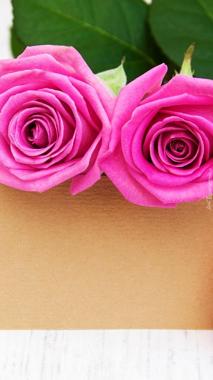 Dwie róże