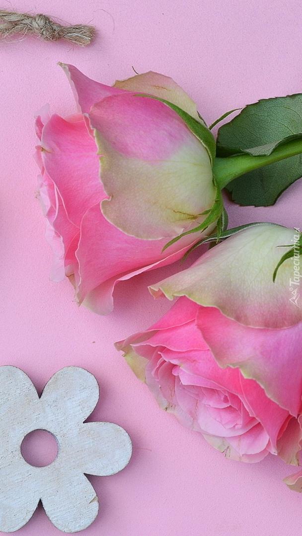 Dwie róże na różowym tle